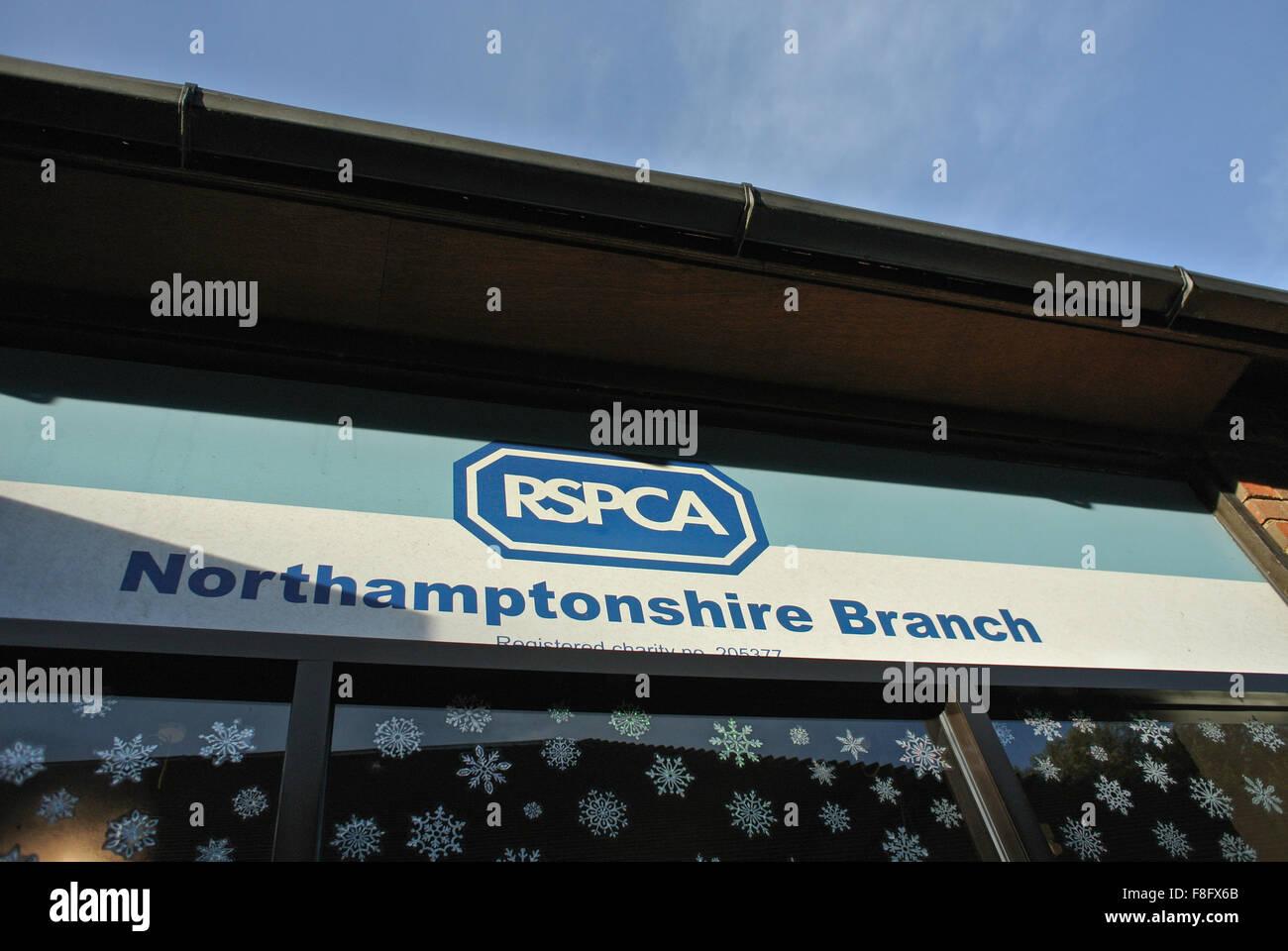 RSPCA Northampton Branch - Stock Image