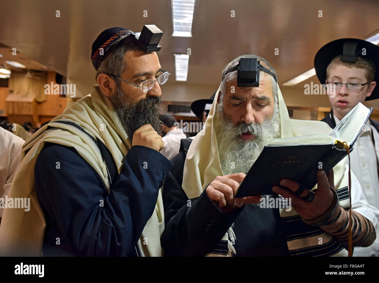 2 religious, Jewish men discussing a passage in a prayer book at morning services at a synagogue in Brooklyn, New - Stock Image