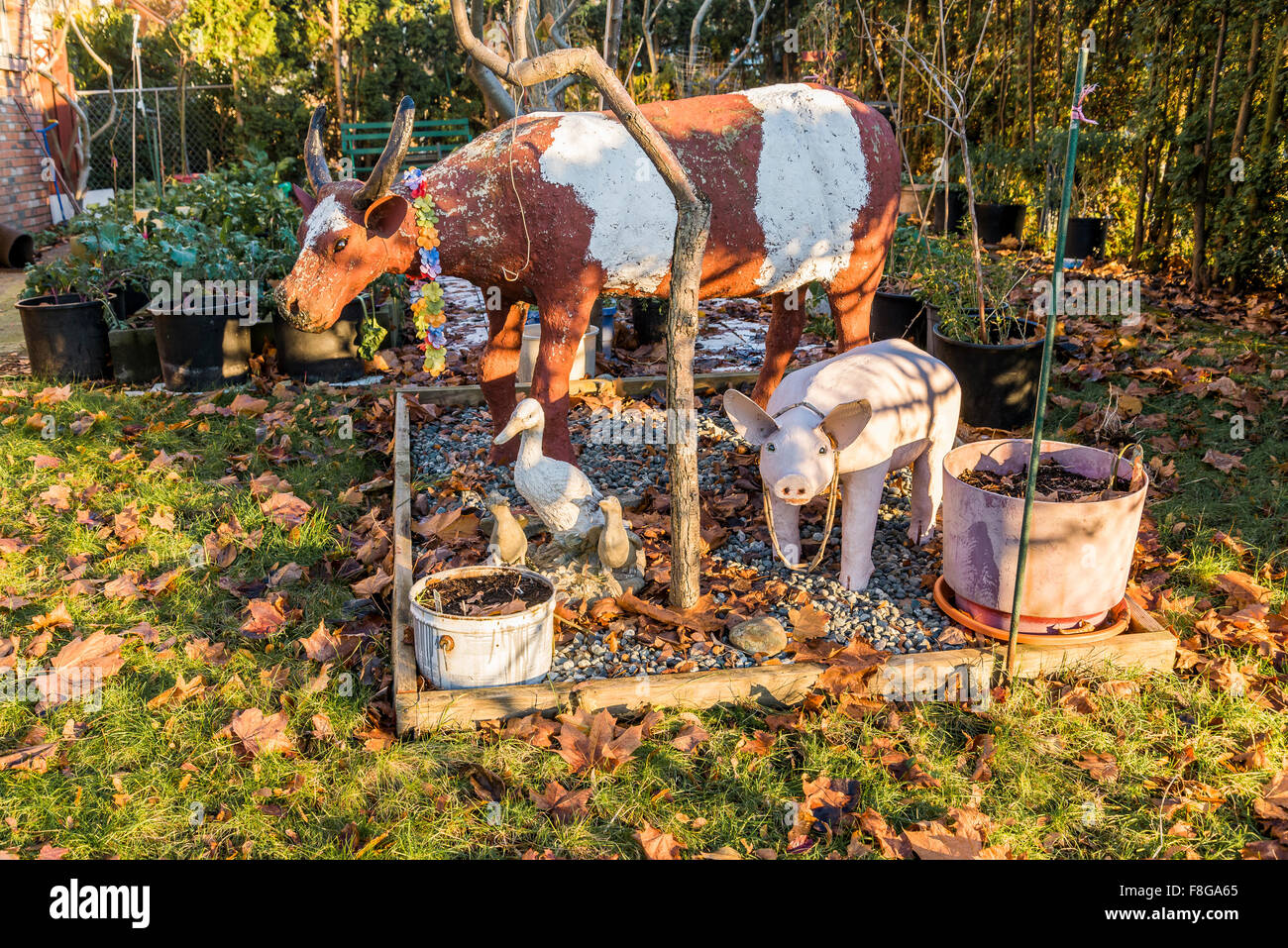 backyard cow with garland and ducks and pig - Stock Image