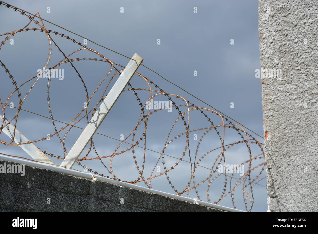 Rusted razor wire tops a wall at the Robben Island prison off of Cape Town South Africa - Stock Image