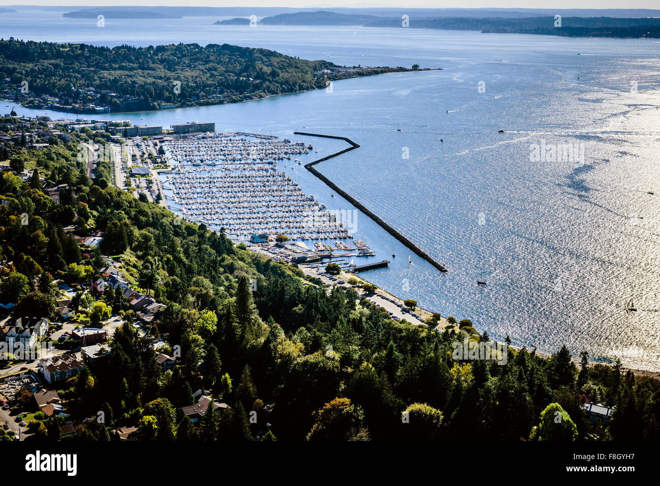 Aerial view of Seattle marina, Washington, United States - Stock Image