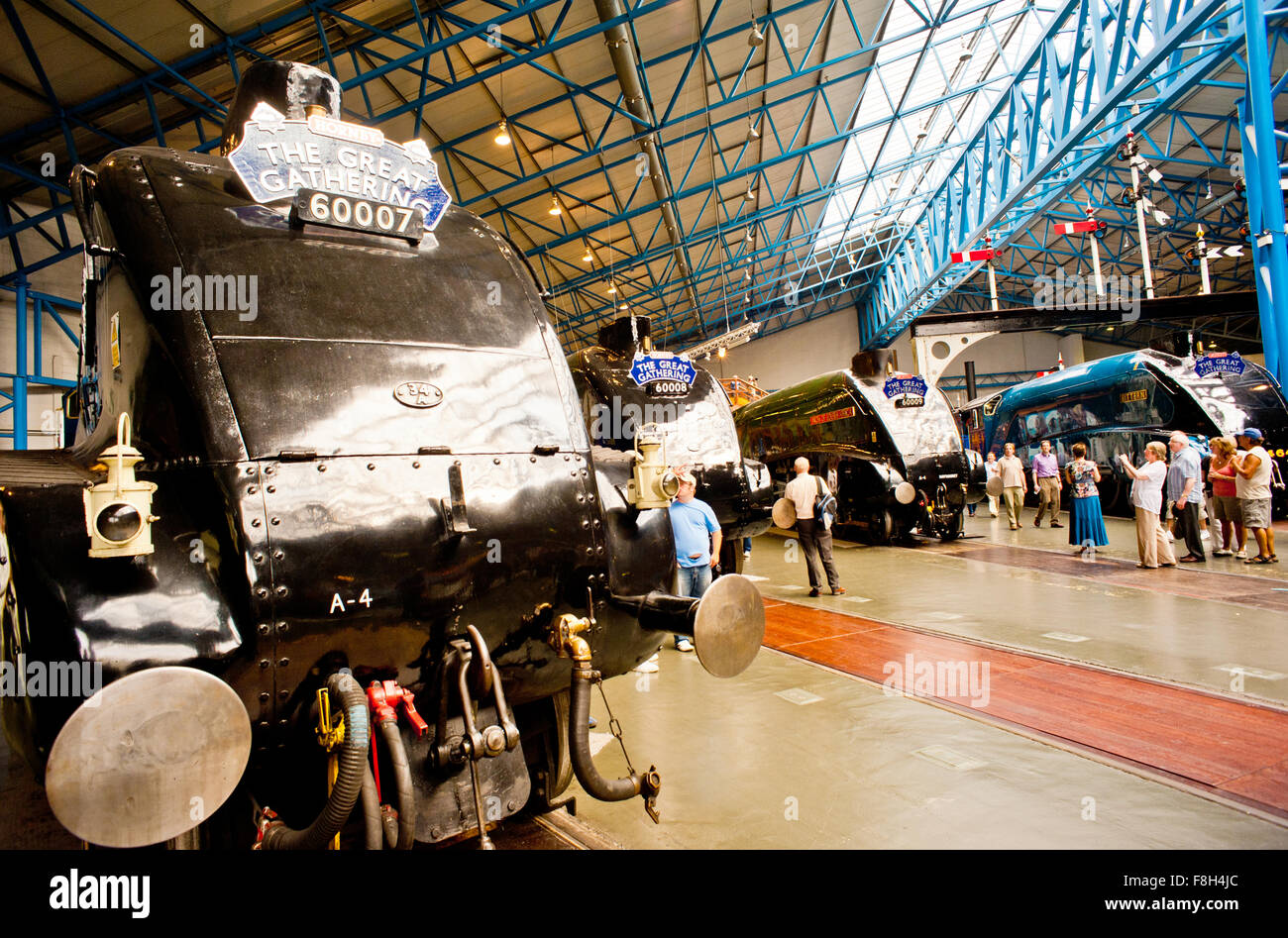 The Great Gathering of A4s at National Railway Museum York - Stock Image
