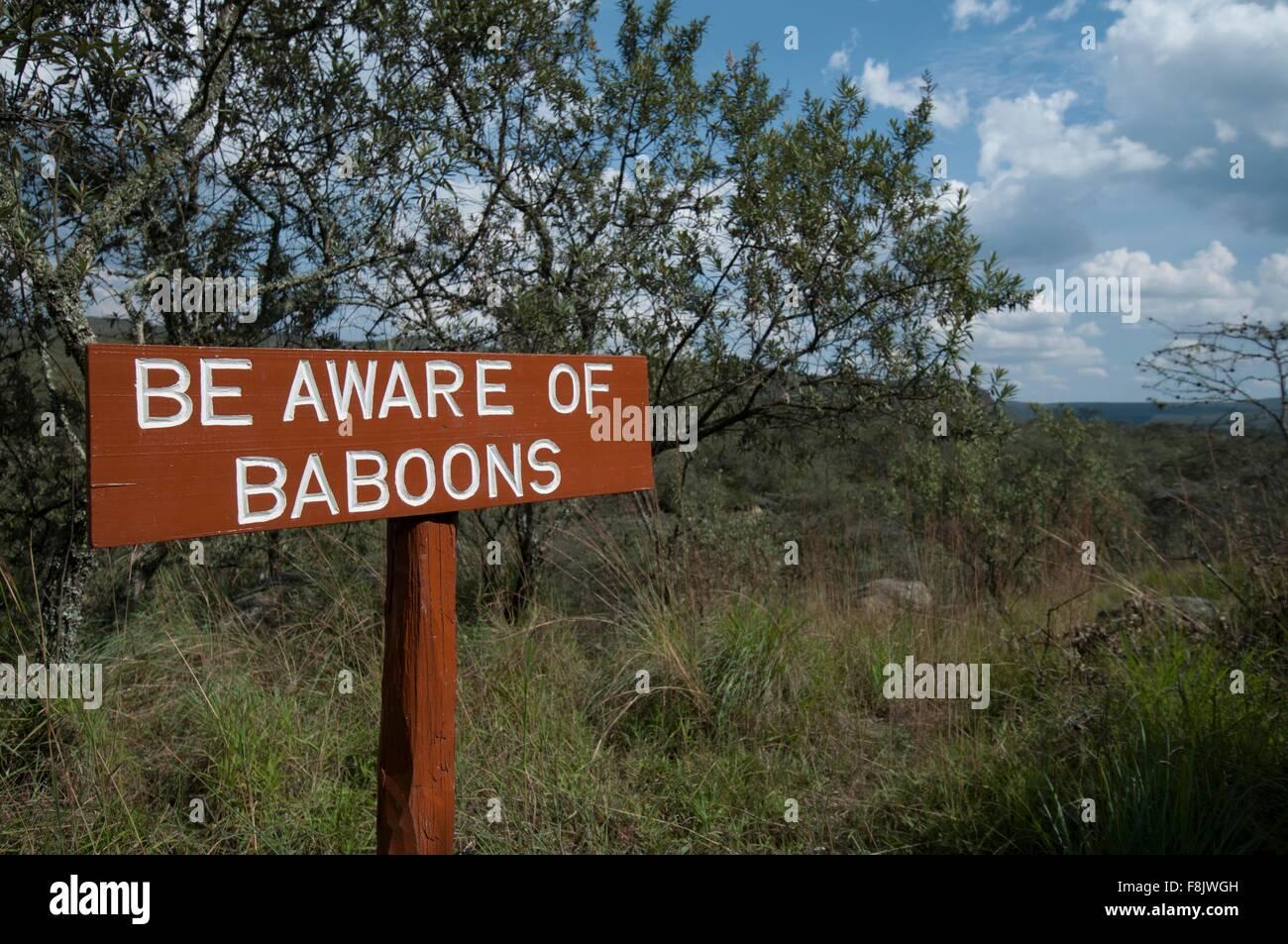 Baboon warning sign, Rift Valley, Kenya Stock Photo