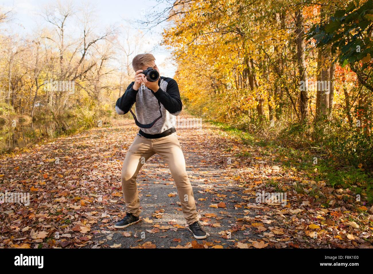 Teenage boy photographing from road autumn park forest - Stock Image