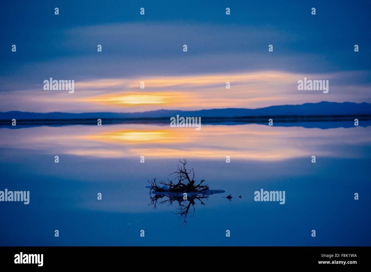 Reflection pool of horizon over water, blue evening sky and sunset, Bonneville, Utah, USA Stock Photo
