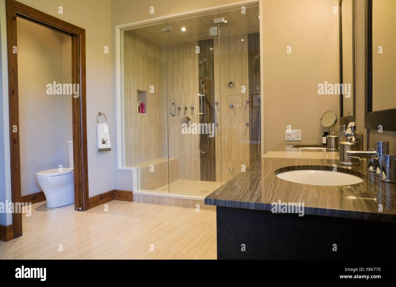 Main bathroom with double steam glass shower stall, vanity and Stock ...