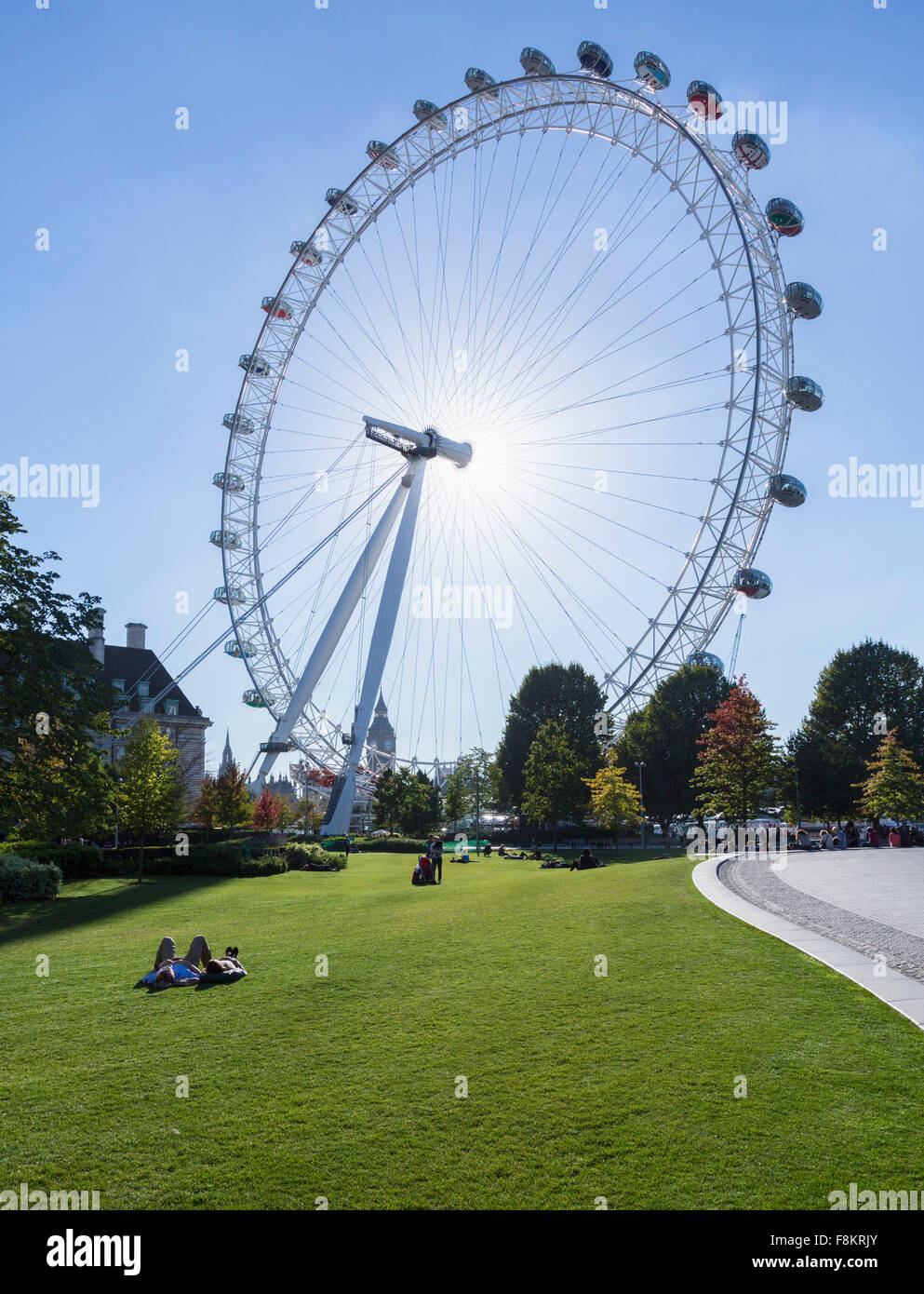 London Eye, London, England, UK from Jubilee Gardens - Stock Image