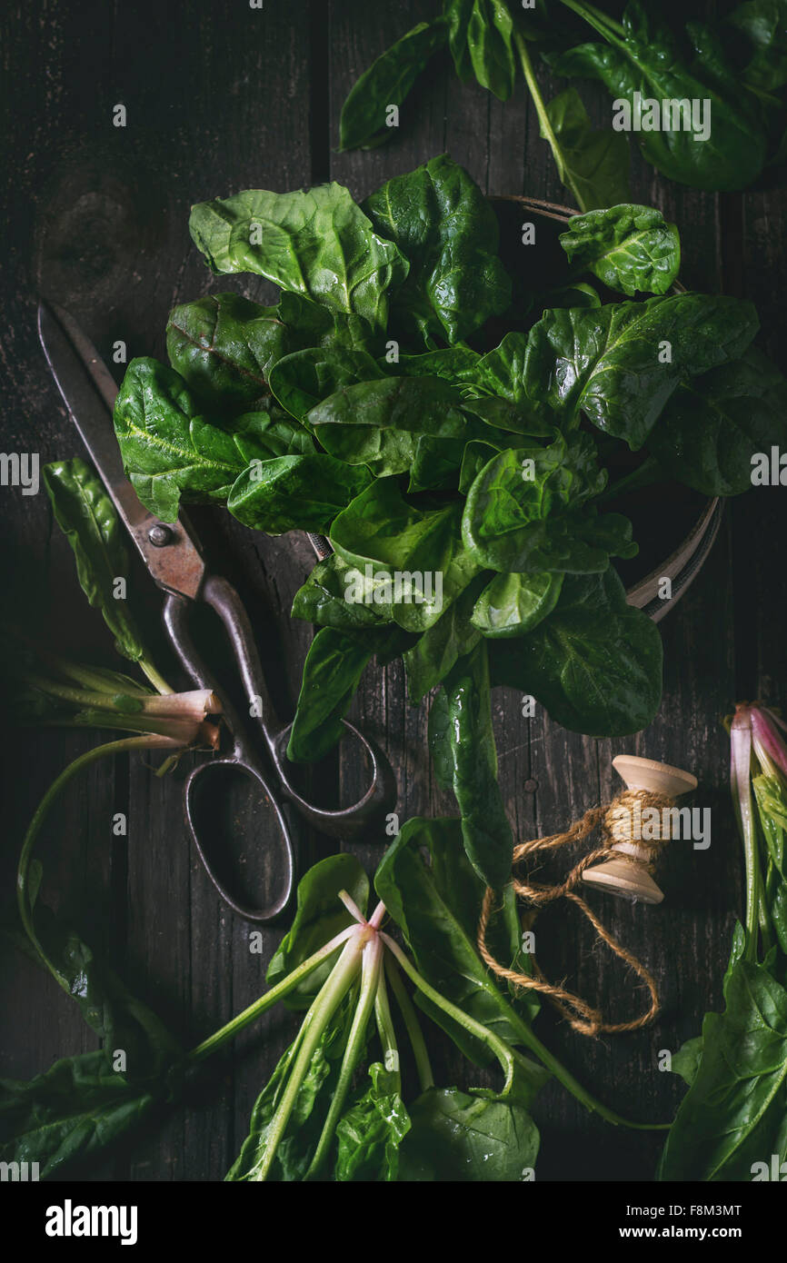 Composition with fresh spinach, old scissors and spool of thread over wooden surface. Top view. Dark rustic style - Stock Image
