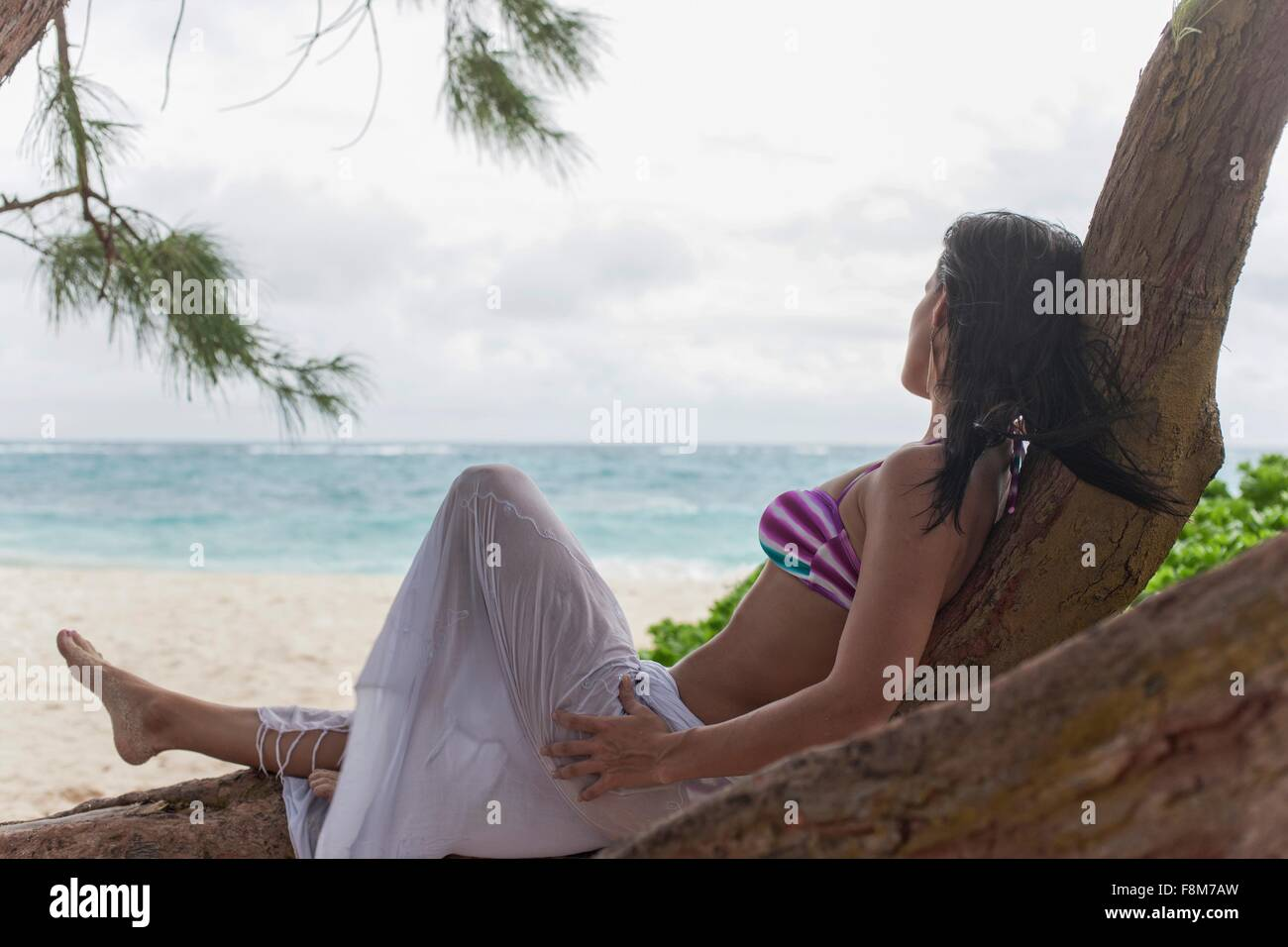 Woman reclining in beach tree looking out at sea, Barbados, The Caribbean - Stock Image