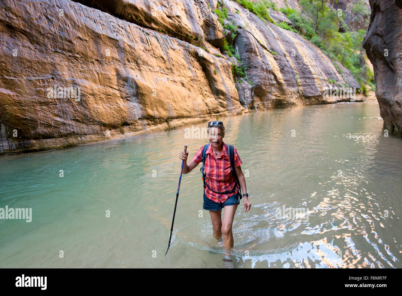 woman hiking in north fork river, Zion National Park Stock Photo