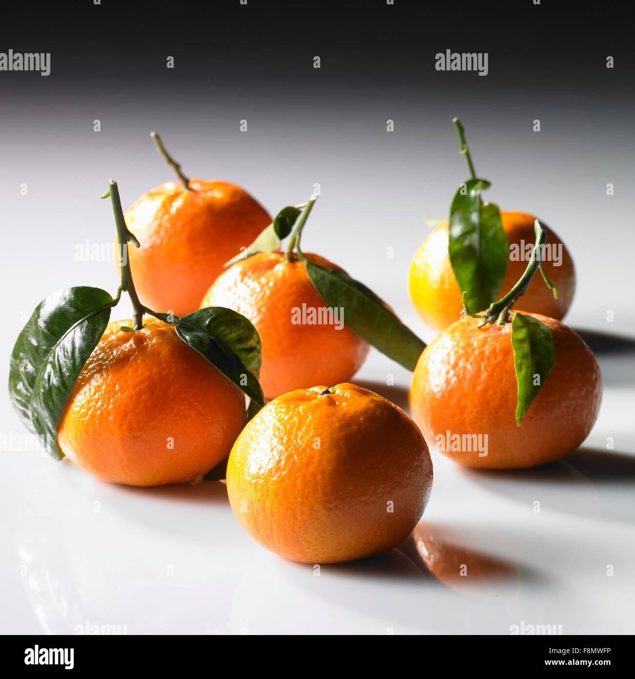 Mandarins with stems and leaves - Stock Image