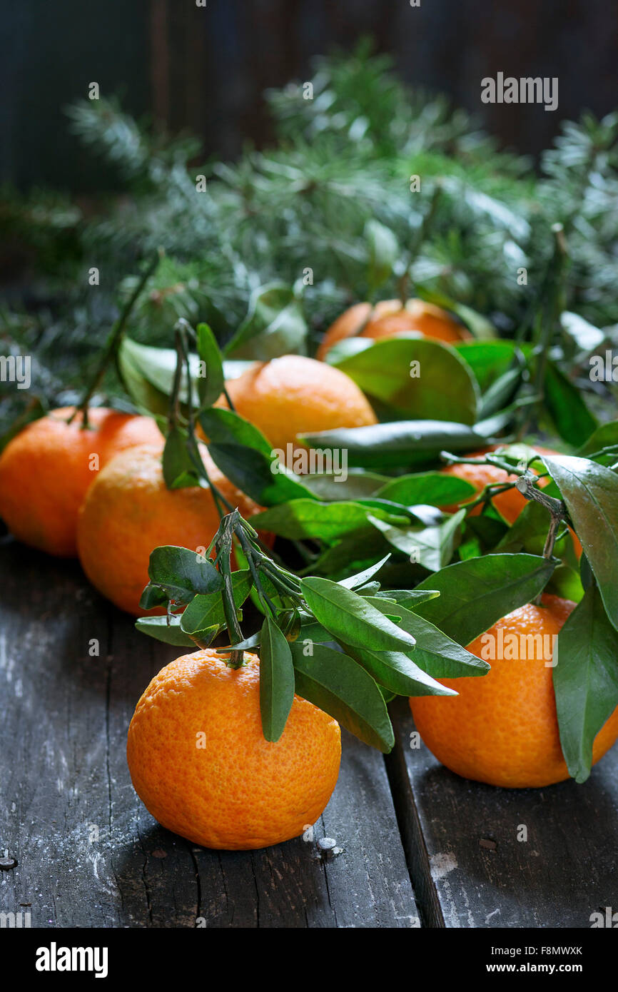 Tangerines with leaves with Christmas tree over old wooden table. Natural day light. Dark rustic style - Stock Image