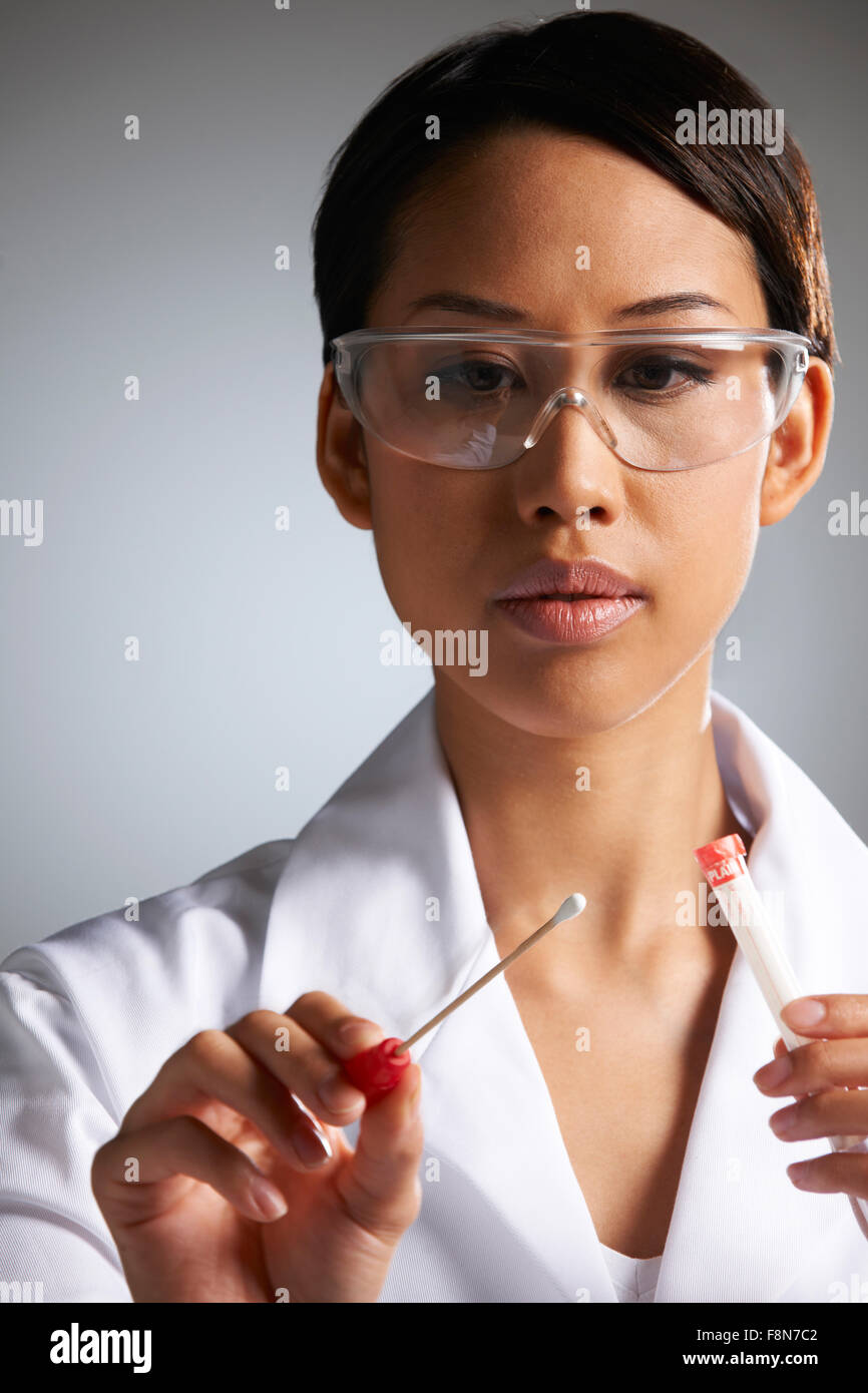 Female Scientist Collecting DNA Sample On Swab - Stock Image