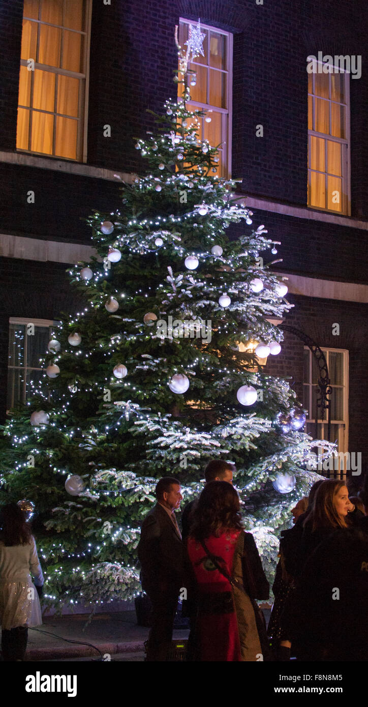 10 Downing Street, London, UK. 10th December, 2015. The Downing Street christmas tree is lit, watched by PM David - Stock Image