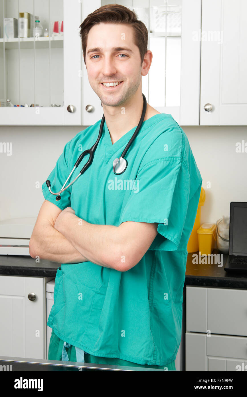 Portrait Of Vet Wearing Scrubs In Surgery - Stock Image