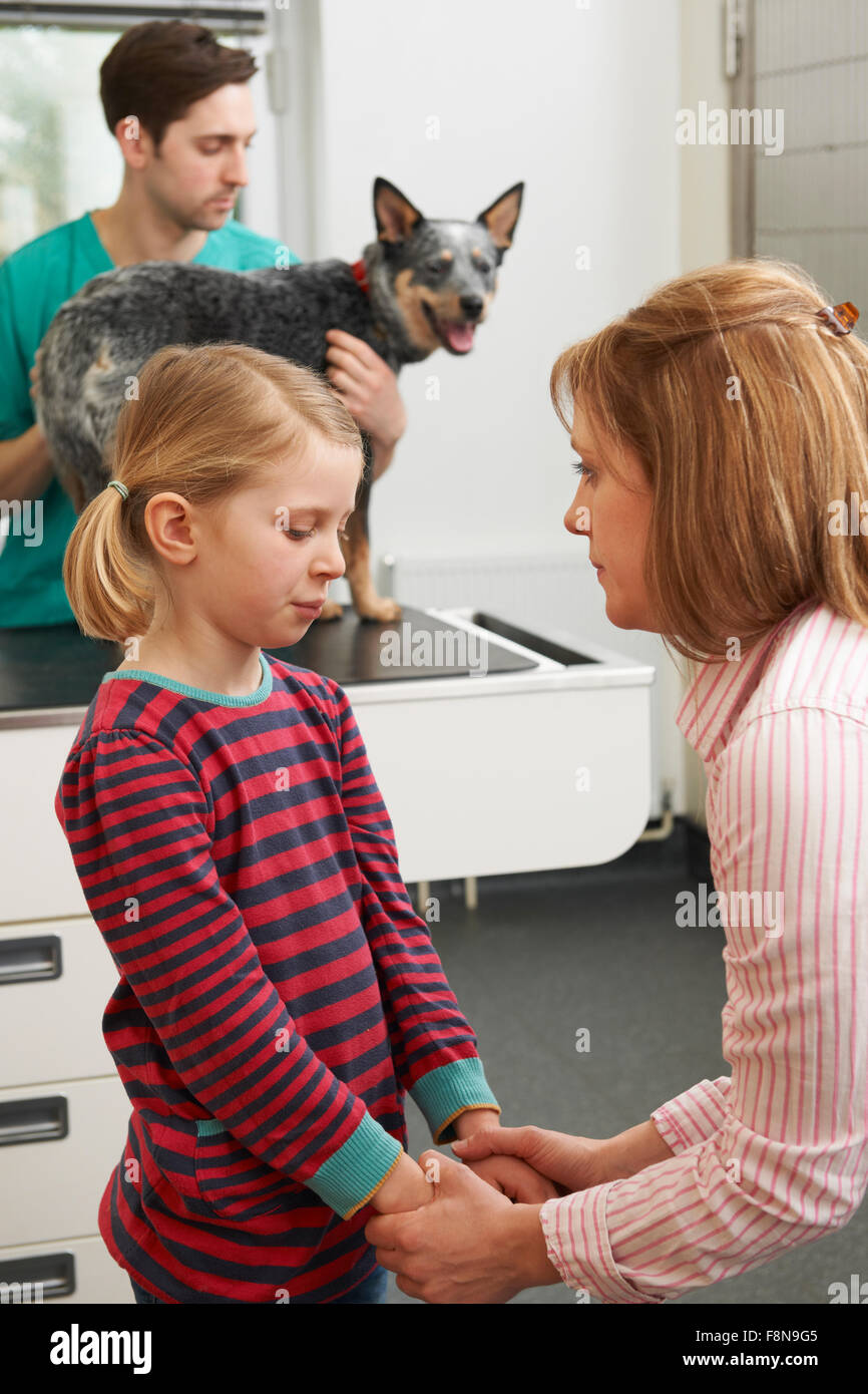 Mother Comforting Girl As Vet Treats Sick Dog - Stock Image
