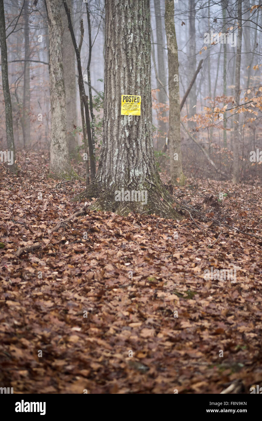 Yellow sign on tree in forest warning of private property boundary in woods. Posted Private Property. - Stock Image