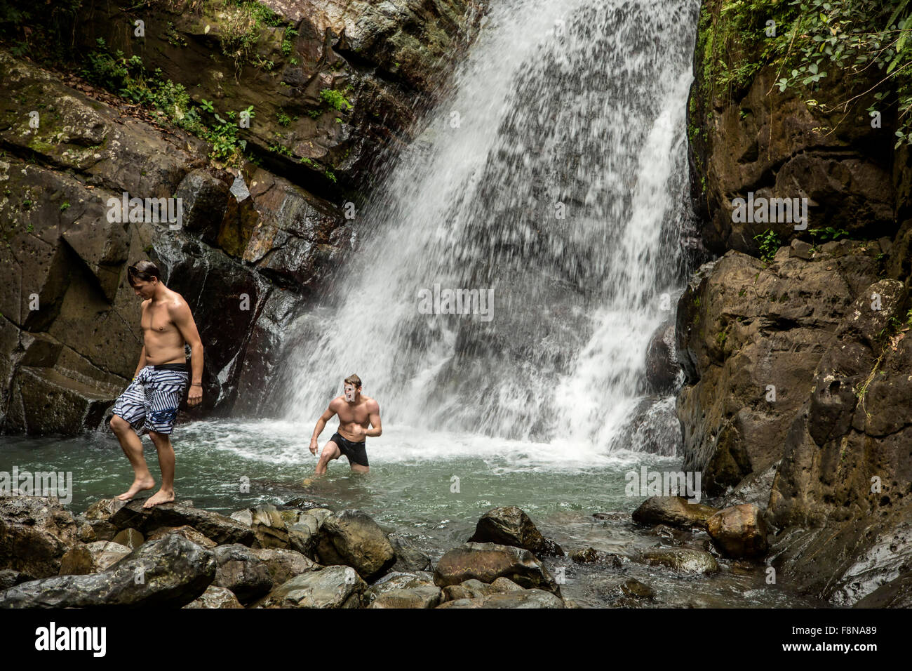 Swimmers at La Mina Falls, Caribbean National Forest (El Yunque Rain Forest), Puerto Rico - Stock Image