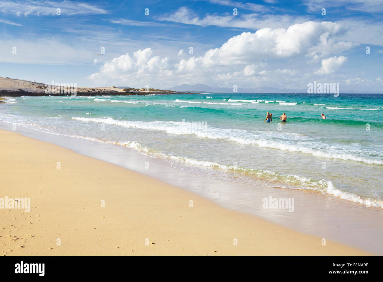 Fuerteventura Island, beach near Corralejo, Parque Natural de  Corralejo, Spain, Canary Islands, - Stock Image