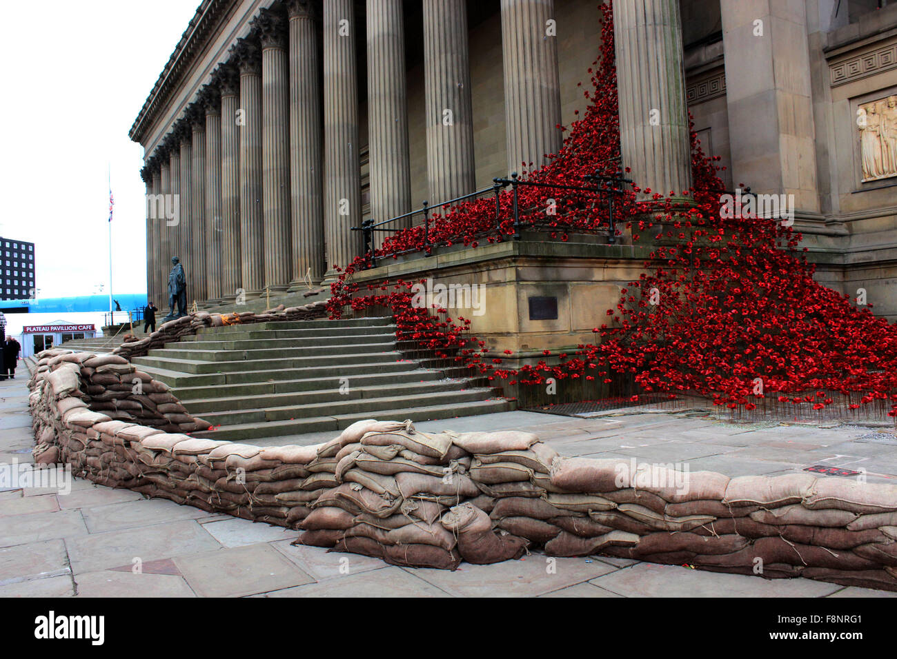 'Weeping Window' poppies at St George's Hall Liverpool - Stock Image