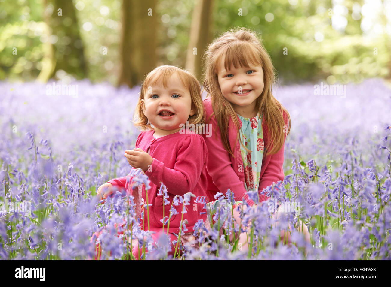 Two Girls Sitting In Bluebell Woods Together - Stock Image