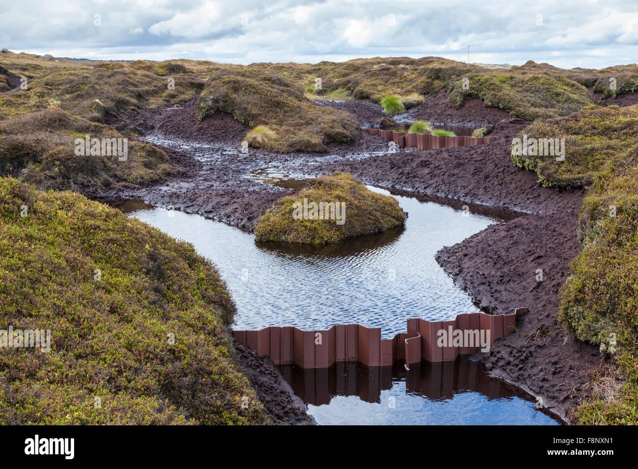 Ocean City Island Erosion Control