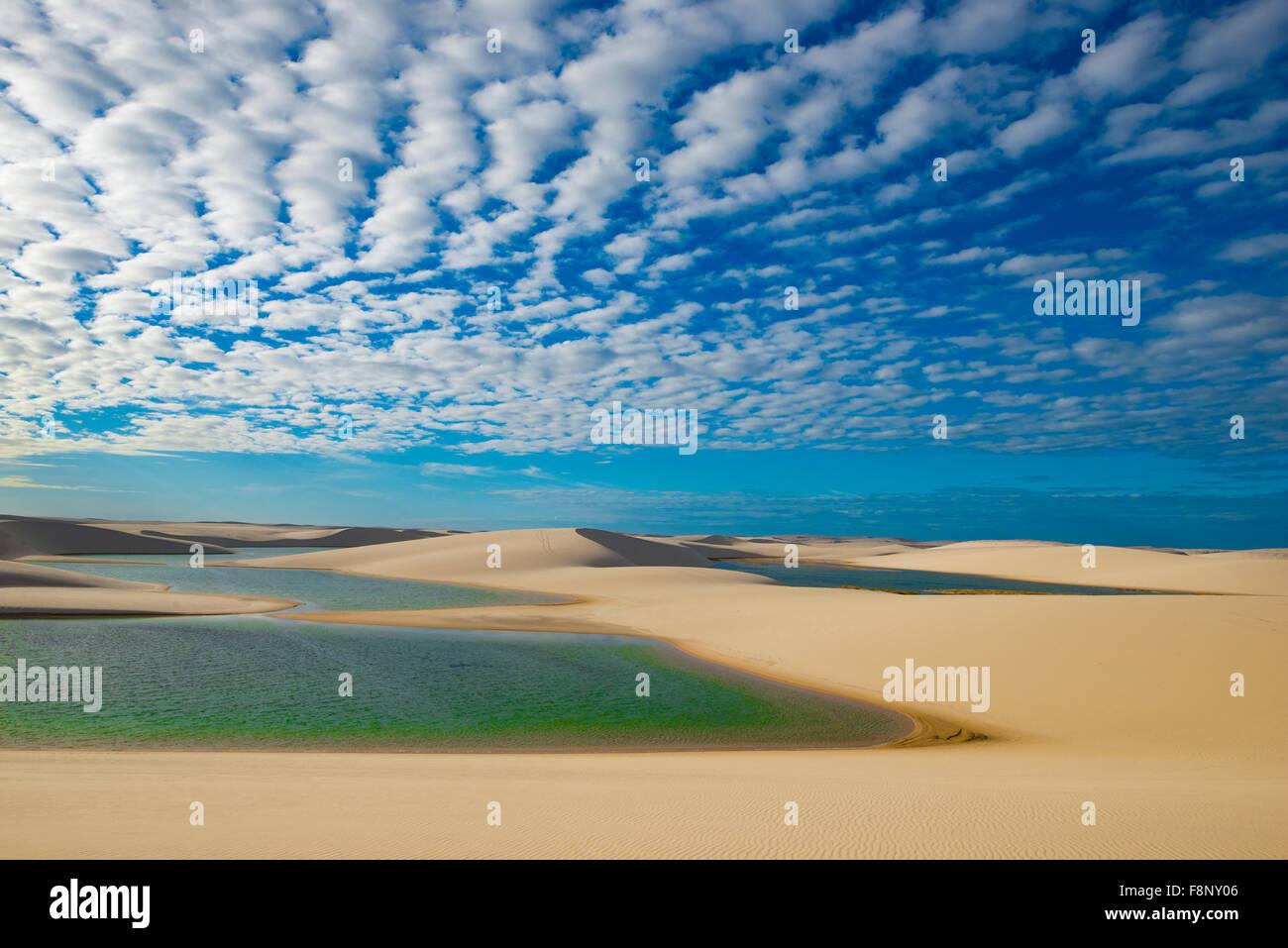 Rainwater  ponds trapped in white dunes, Lencois Maranhenses National Park, Brazil, Atlantic Ocean - Stock Image