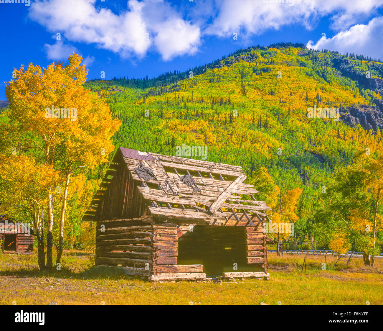 Cabin at Capitol City, Uncompahgre National Forest, Colorado, Ghost town established in 1877, Henson Creek, Engineer - Stock Image