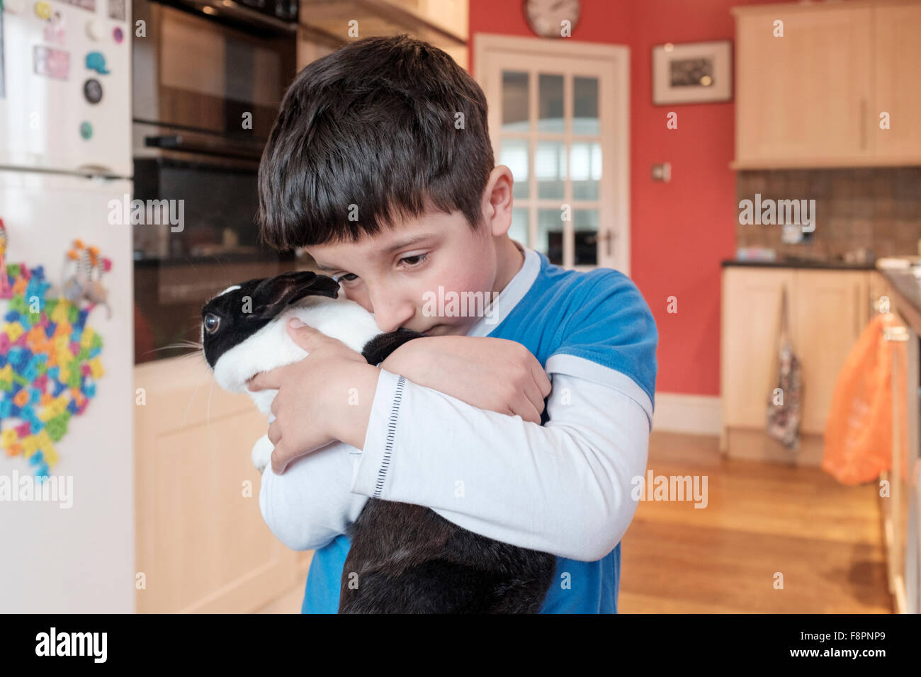Boy cuddles his pet rabbit - Stock Image