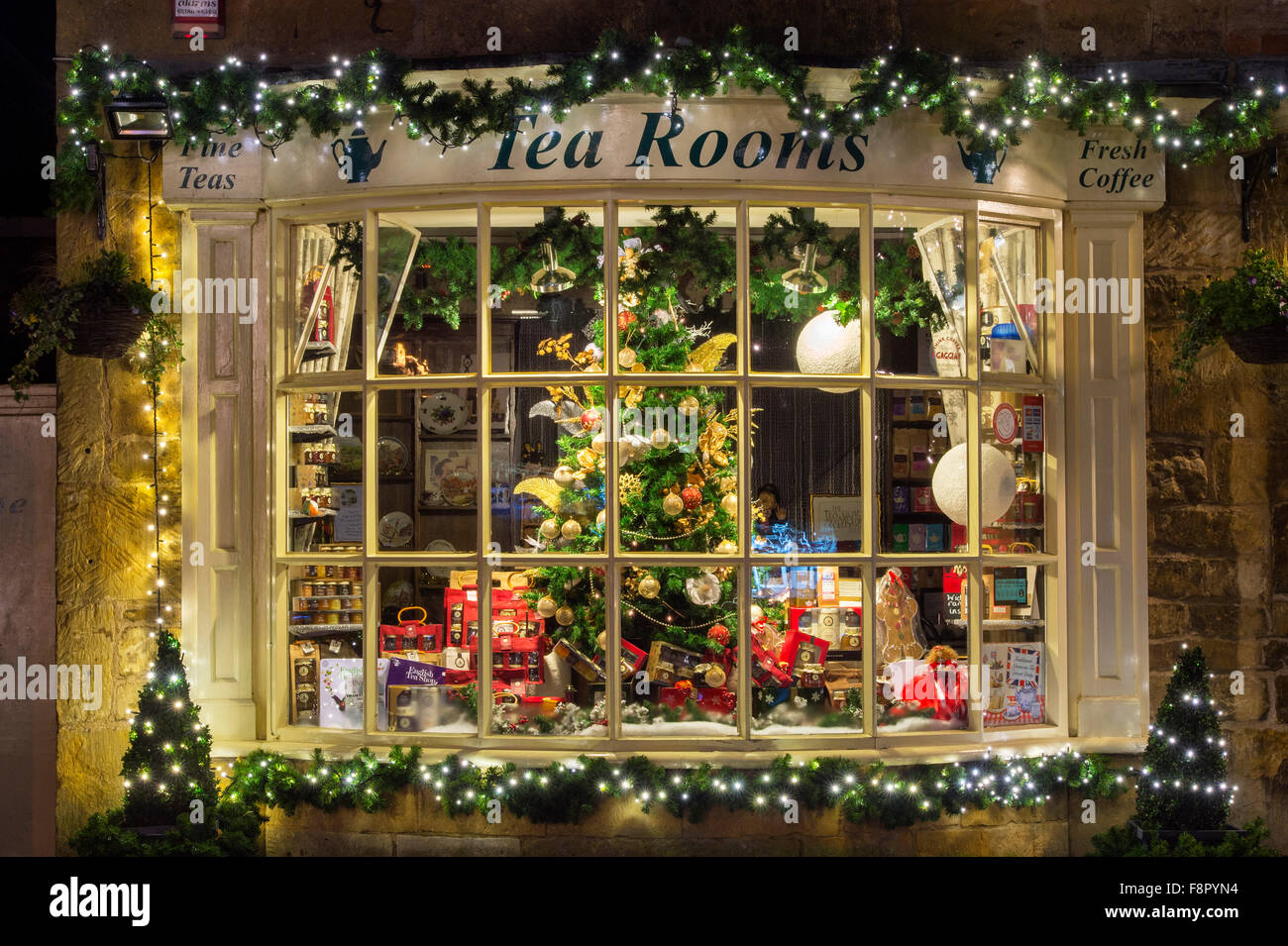 christmas tree shop display window at night cotswolds