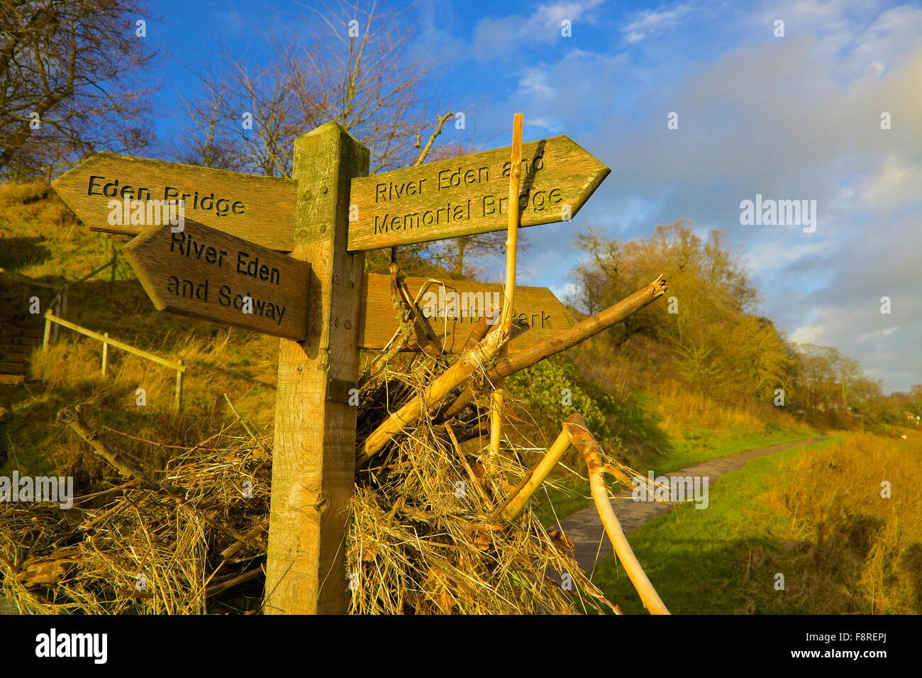 Aftermath of Carlisle Floods. December 2015. Foot path sign showing flotsam illustrating height of flooded River - Stock Image