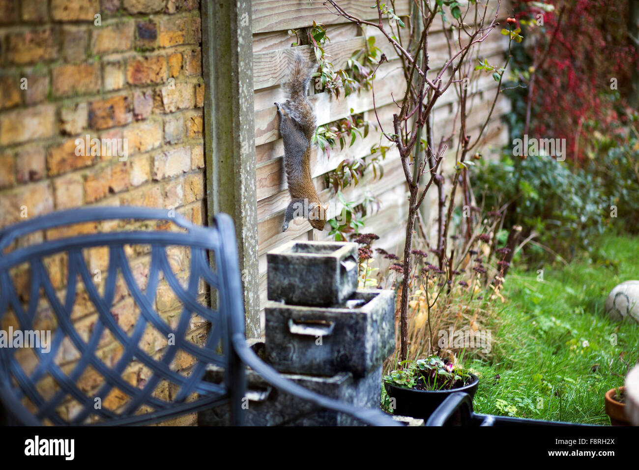 Large water feature stock photos large water feature for Koi pool water gardens blackpool