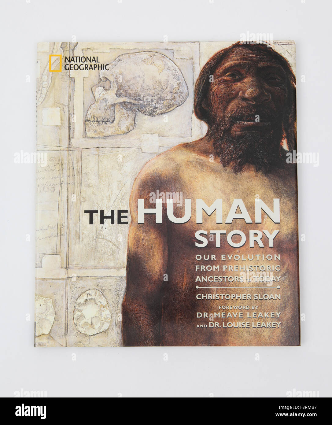 The book -The Human Story, by Christopher Sloan - Stock Image