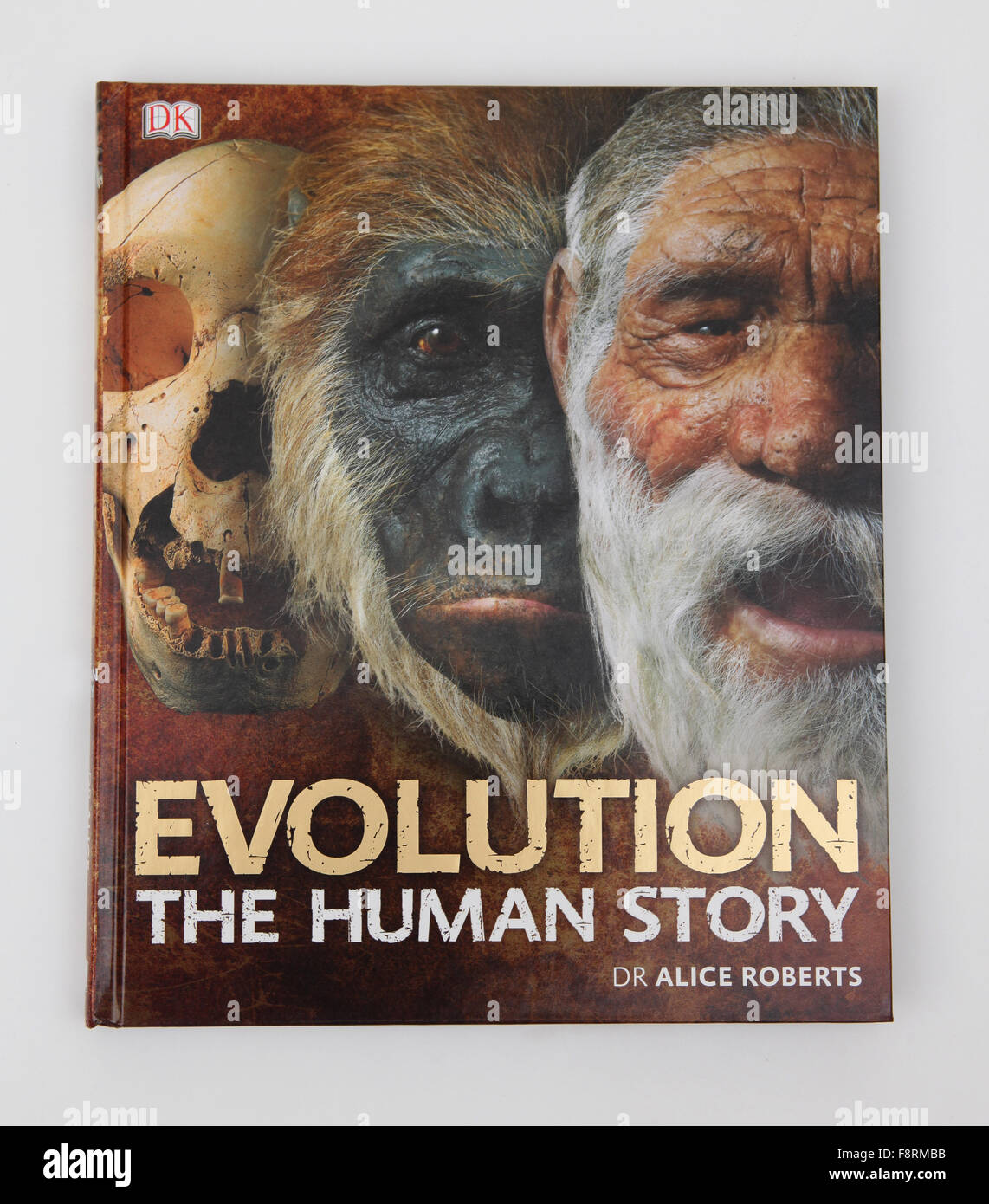 The book - Evolution The Human Story, by Dr Alice Roberts - Stock Image