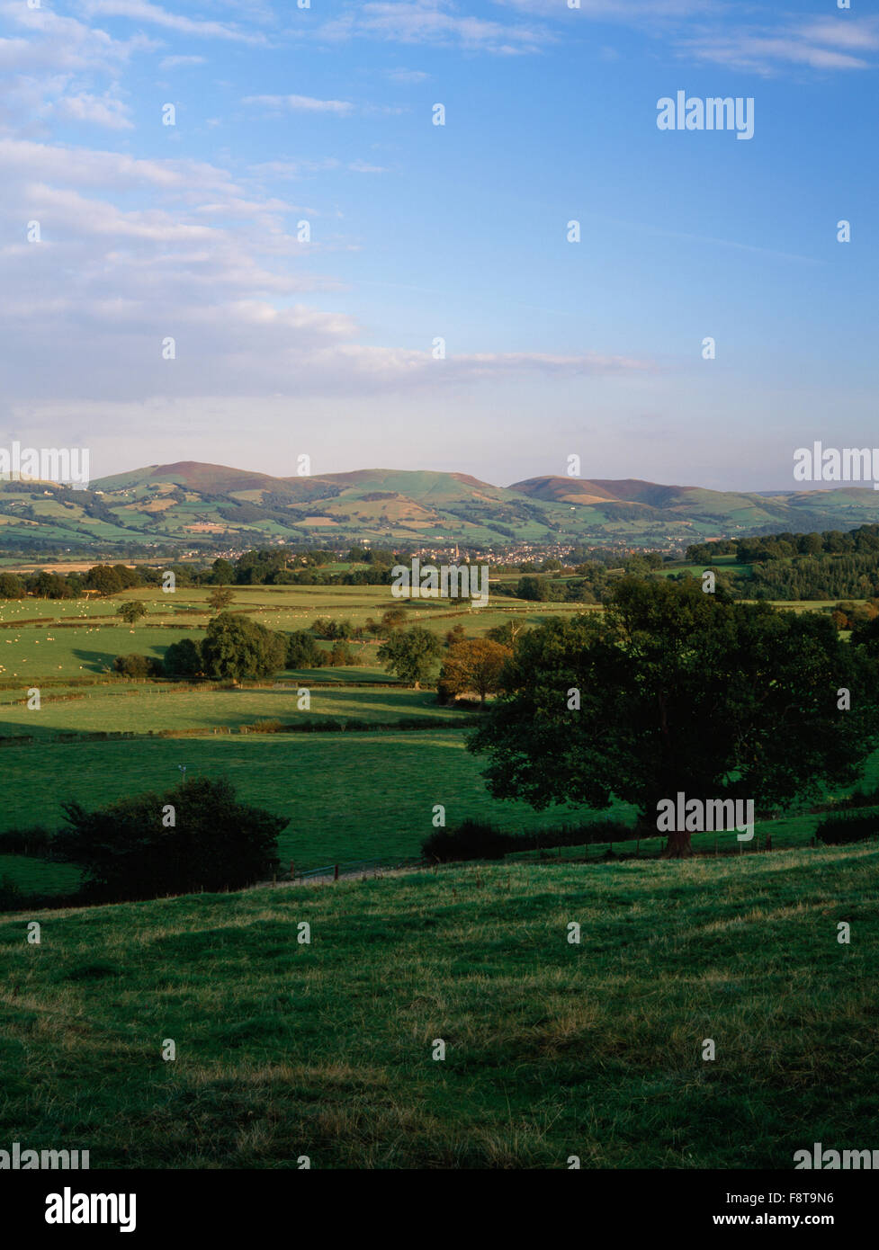 View SE from near Rhewl across the Vale of Clwyd to Ruthin & the southern Clwydian Hills which form the boundary - Stock Image