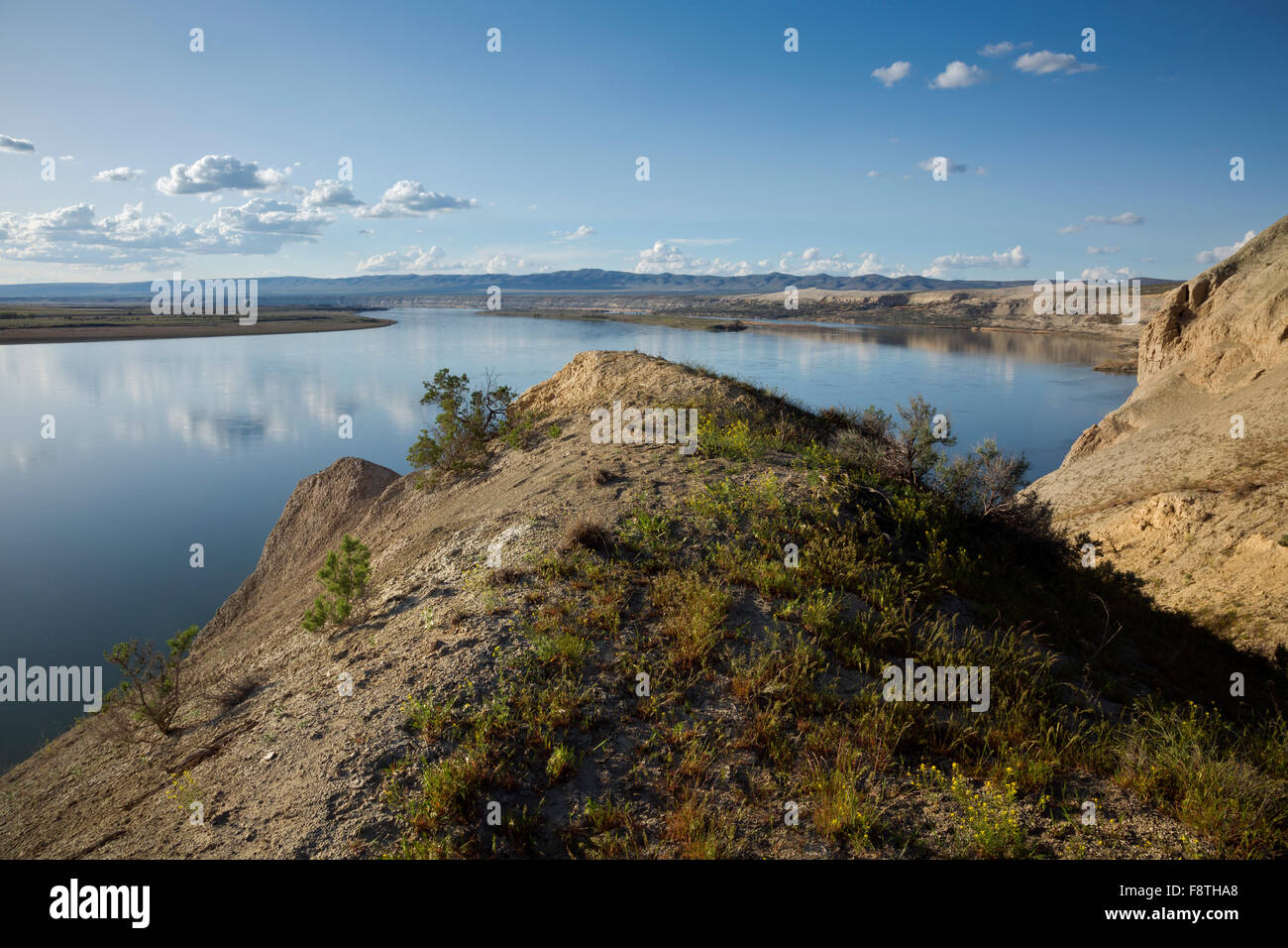 WA12293-00...WASHINGTON - One of the White Bluffs rising above the Columbia River at the Hanford Reach National - Stock Image
