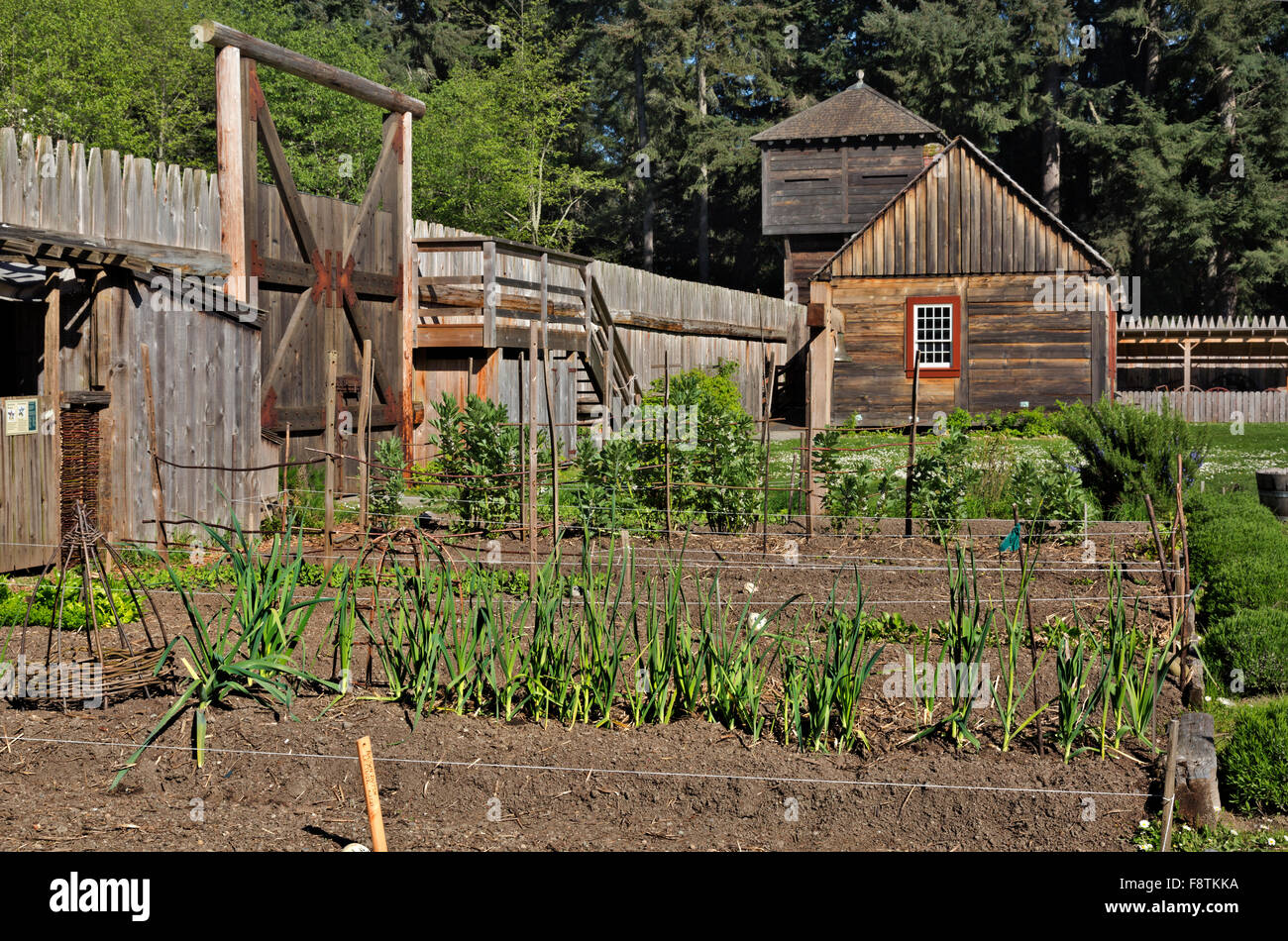 WASHINGTON - Traditional garden, Block House and the outer stockade wall at the Fort Nisqually Historic Site, Point - Stock Image