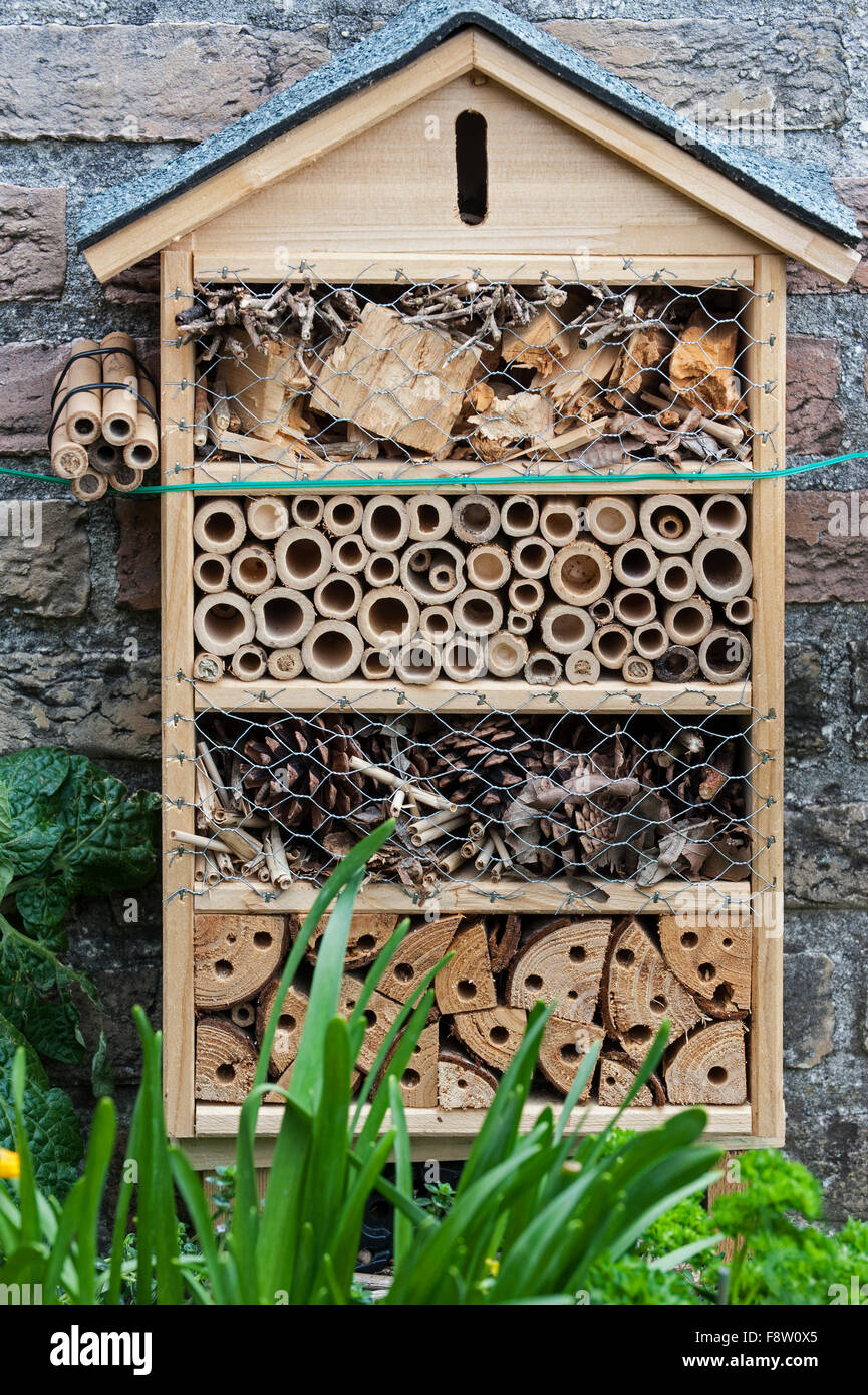 Insect hotel offering nesting facilities for solitary bees and cavities for hibernating ladybirds and butterflies - Stock Image