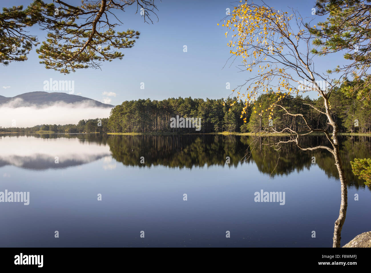 Loch Garten in the Cairngorms National Park of Scotland. Stock Photo