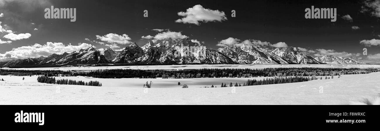 Black & white winter panorama view of the Teton Mountain Range, Wyoming, USA - Stock Image