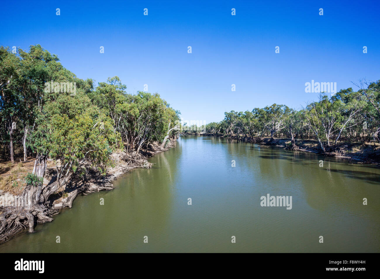 Australia, New South Wales, western Riverina Region, Murrumbidgee River at Hay - Stock Image