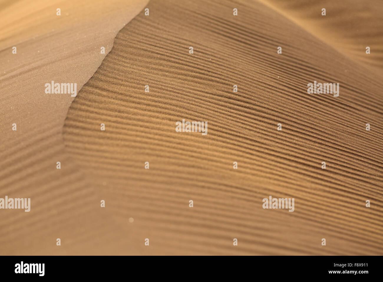 Wind erosion patterns on a dune in Sossusvlei, Namib-Naukluft Park, Namibia - Stock Image