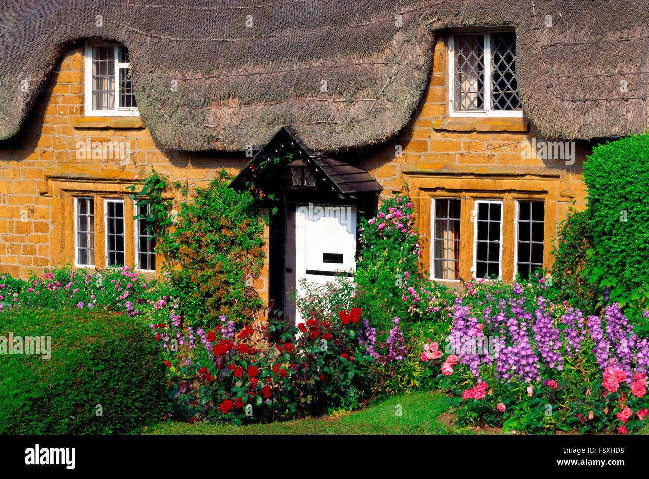 Thatched cottage in Oxfordshire, England, UK - Stock Image