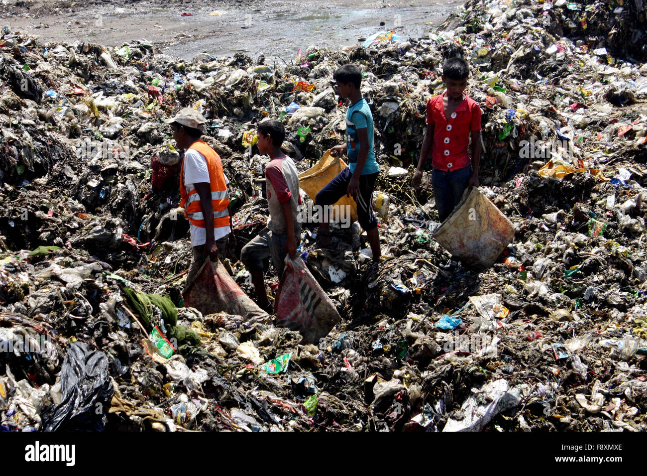 degradable waste and non degradable waste