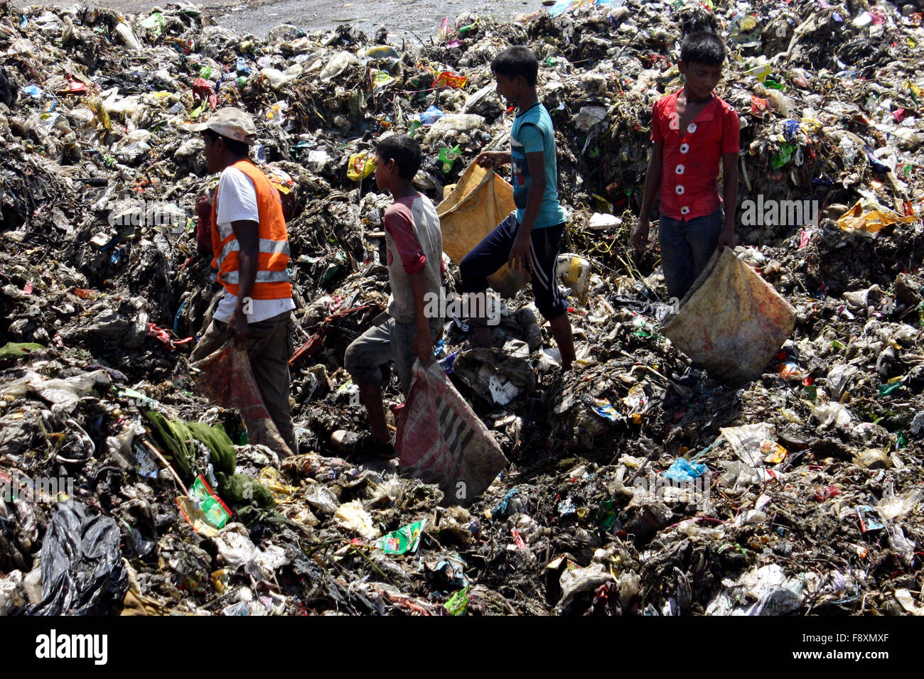 images of biodegradable and nonbiodegradable waste