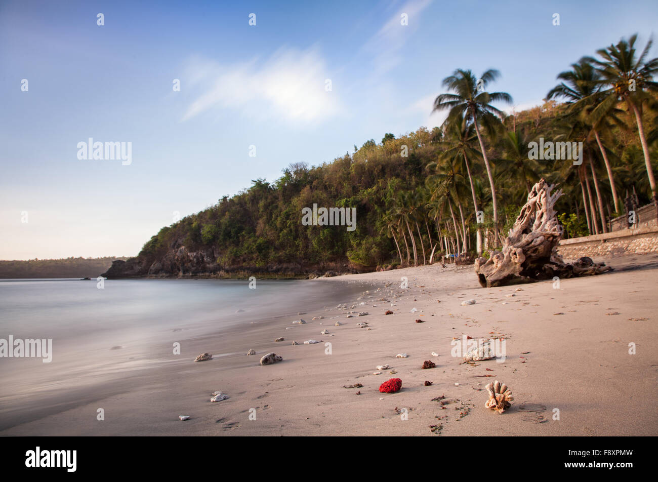 Crystal Bay Beach, remote, wild and untouched natural beach on Nusa Penida Island in Indonesia. Coconut palm fringed - Stock Image
