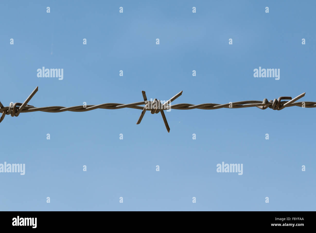barricade single wire on isolated blue background - Stock Image