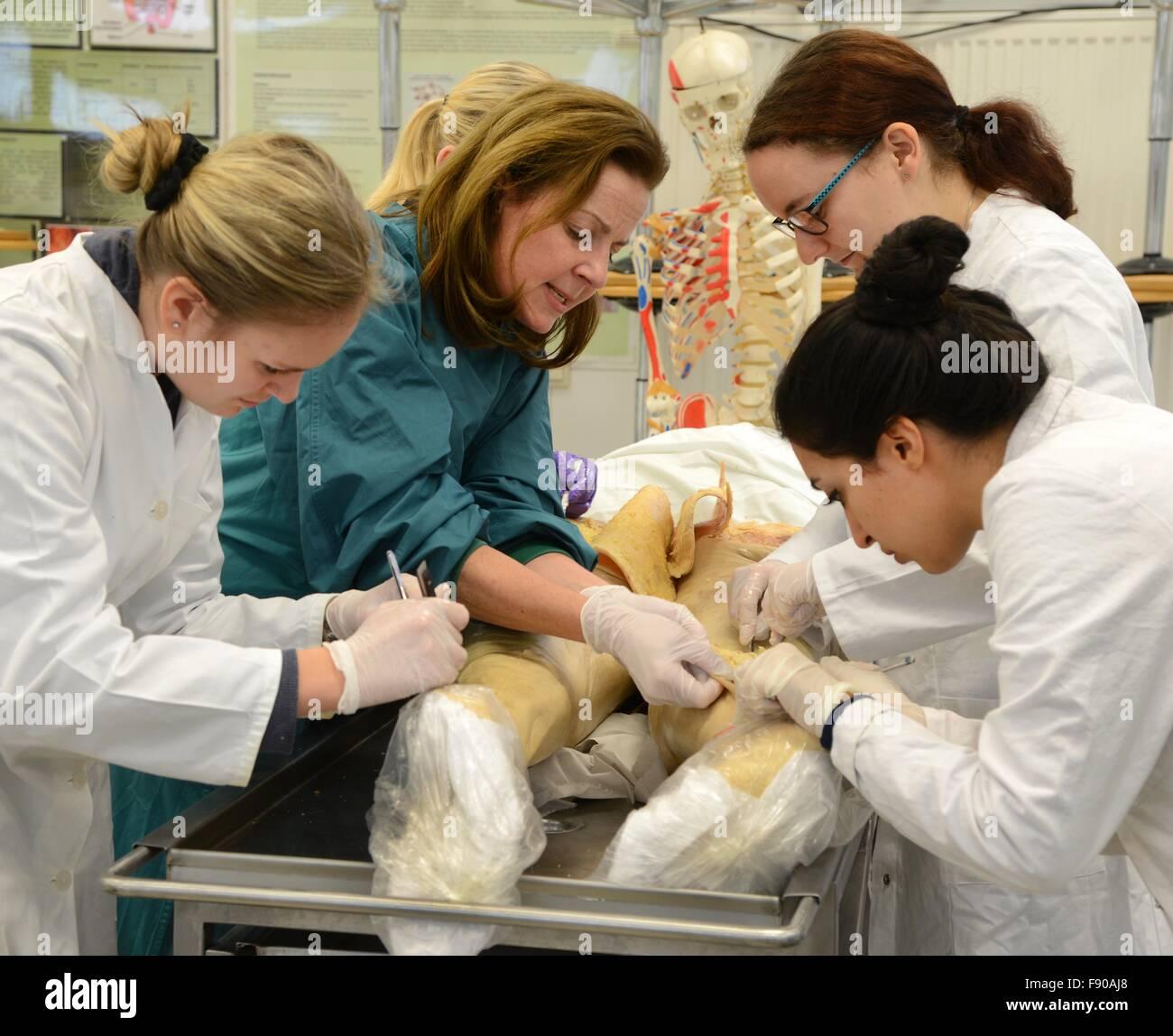 Professor Heike Kielstein, head of anatomy and cell biology, teaches ...