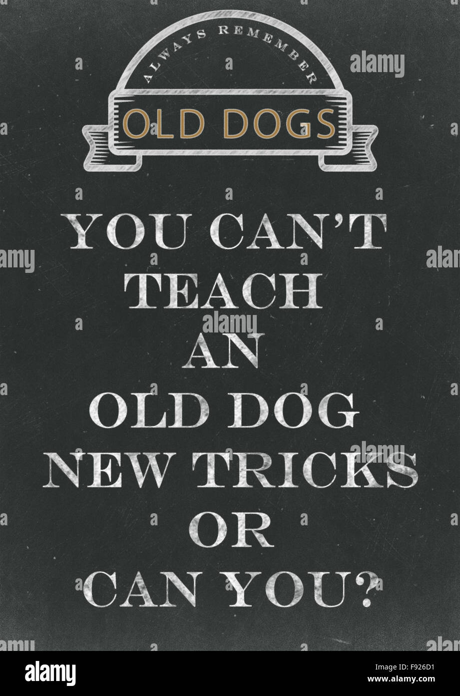 You Can't Teach An Old Dog New Tricks Hand Written On A Chalkboard - Stock Image