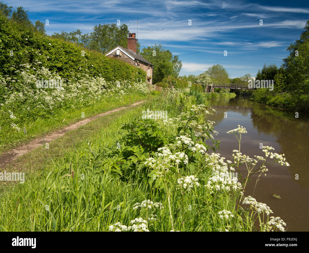 UK, England, Cheshire, Gawsworth, Fools Nook, Macclesfield Canal towpath - Stock Image